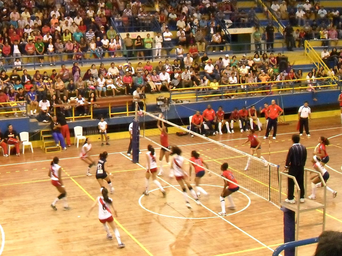 volleyball canada level 1 coaching manual